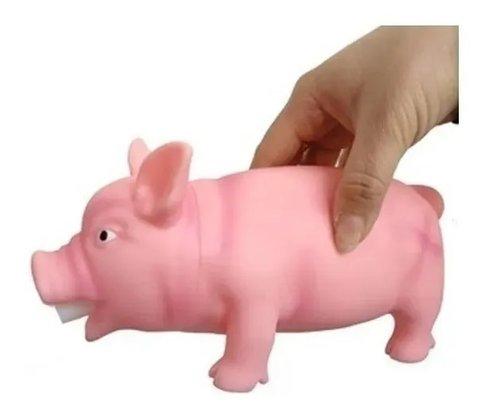 Brinquedo Mordedor Pet Porco PVC 19 X 10 cm